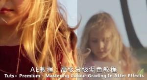 AE教程:高级分级调色教程 Tuts+ Premium – Mastering Colour Grading In